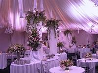 Свадебный стол в белом цвете