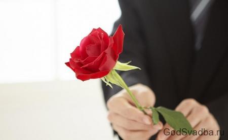 роза в руках